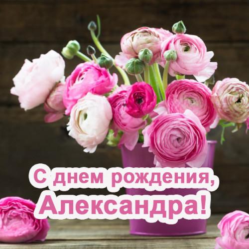 kartinki-s-dnem-rozhdeniya-aleksandra-243560ef51ecd439b.jpg